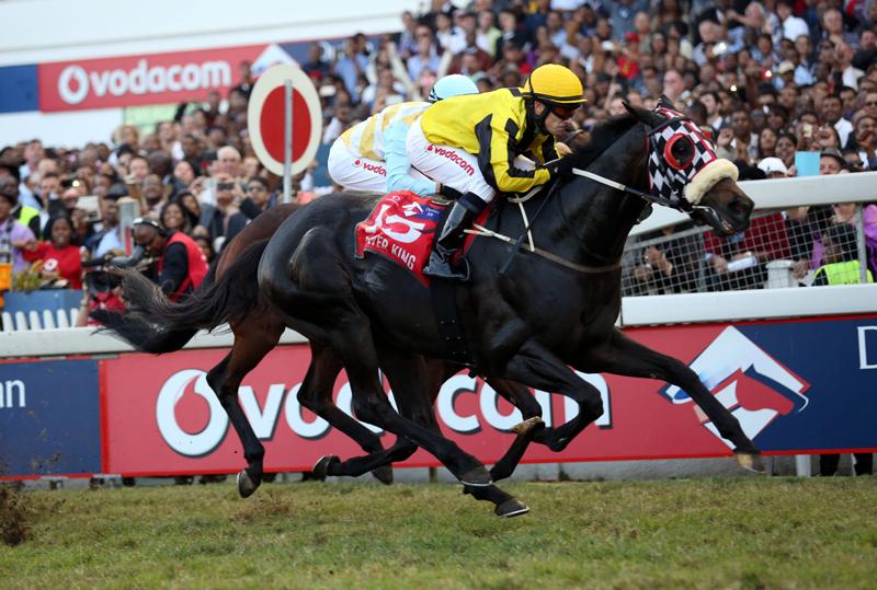 SA Casino Horse Race